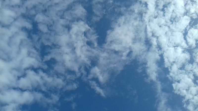 cer - nor în formă de inimă